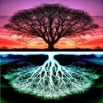 Not really the Tree of Life, but a really cool picture!